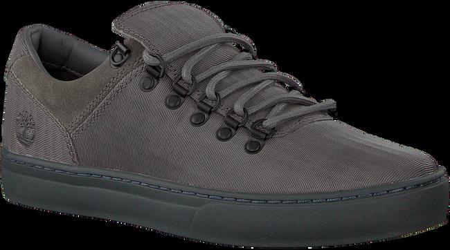 Graue TIMBERLAND Sneaker ADV 2.0 CUPSOLE ALPINE OX  - large