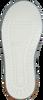 Grüne PINOCCHIO Ankle Boots P2851  - small