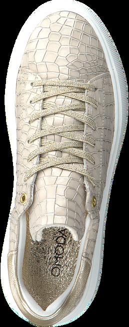 Beige OMODA Sneaker low INGEBORG 1-CAF  - large